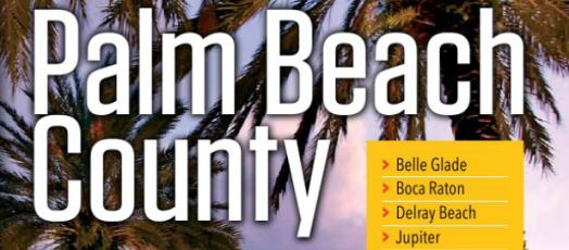 Palm Beach County E Permitting