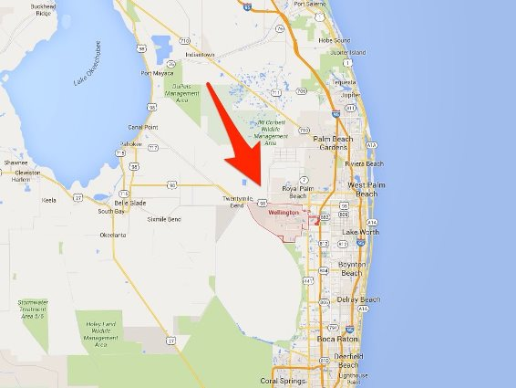 Wellington Florida Is A Community Of About 60 000 People In Southeast 15 Miles West Palm Beach